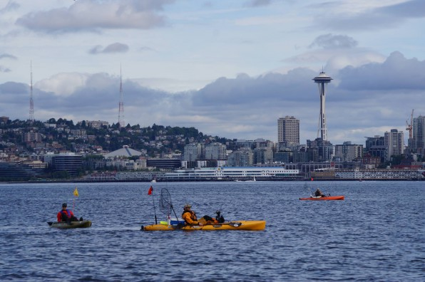 Elliott Bay looking toward Seattle.    Photo courtesy of Puget Soundkeeper Alliance
