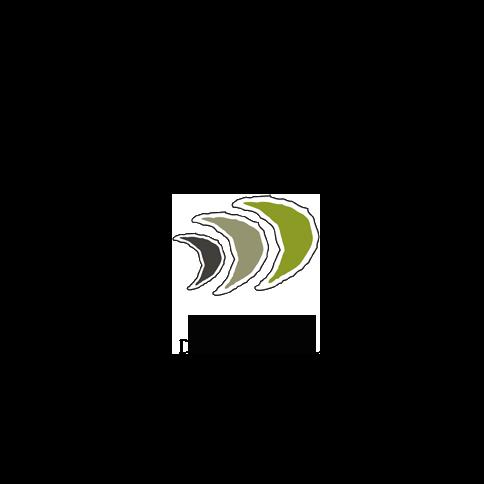 Ditching Dirty Diesel Logo