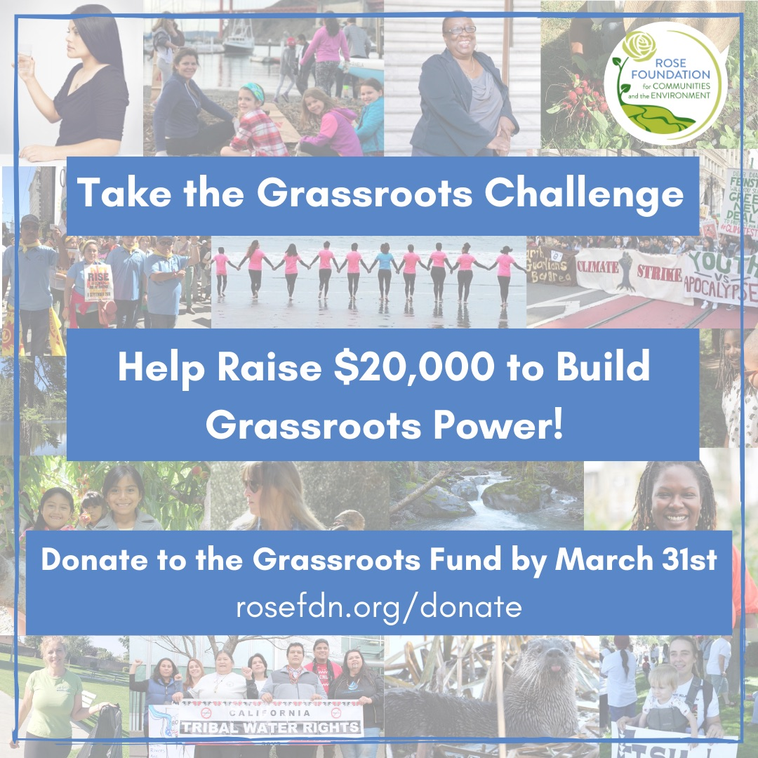 Take the Grassroots Challenge!