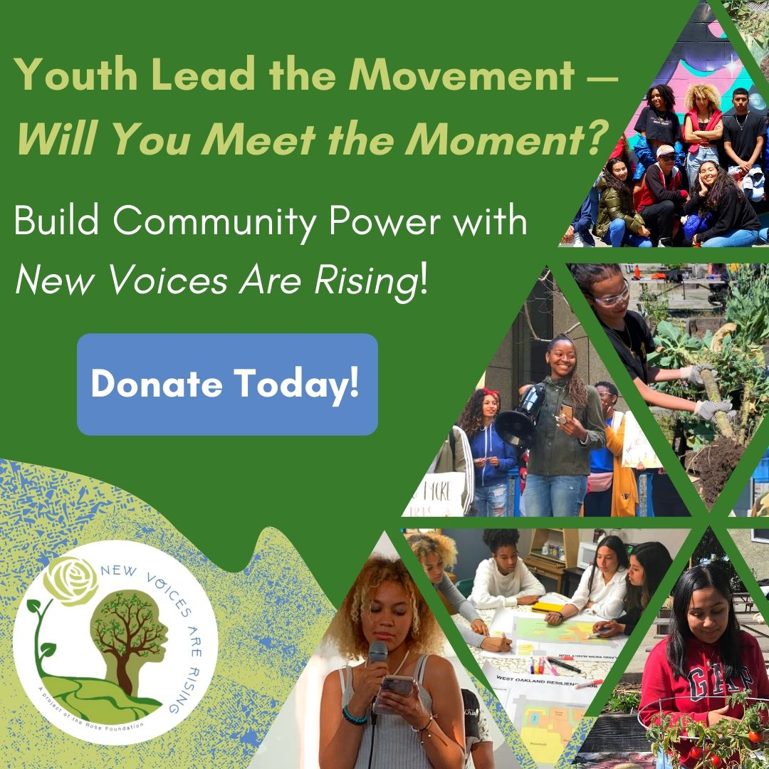 Meet the Moment with New Voices!