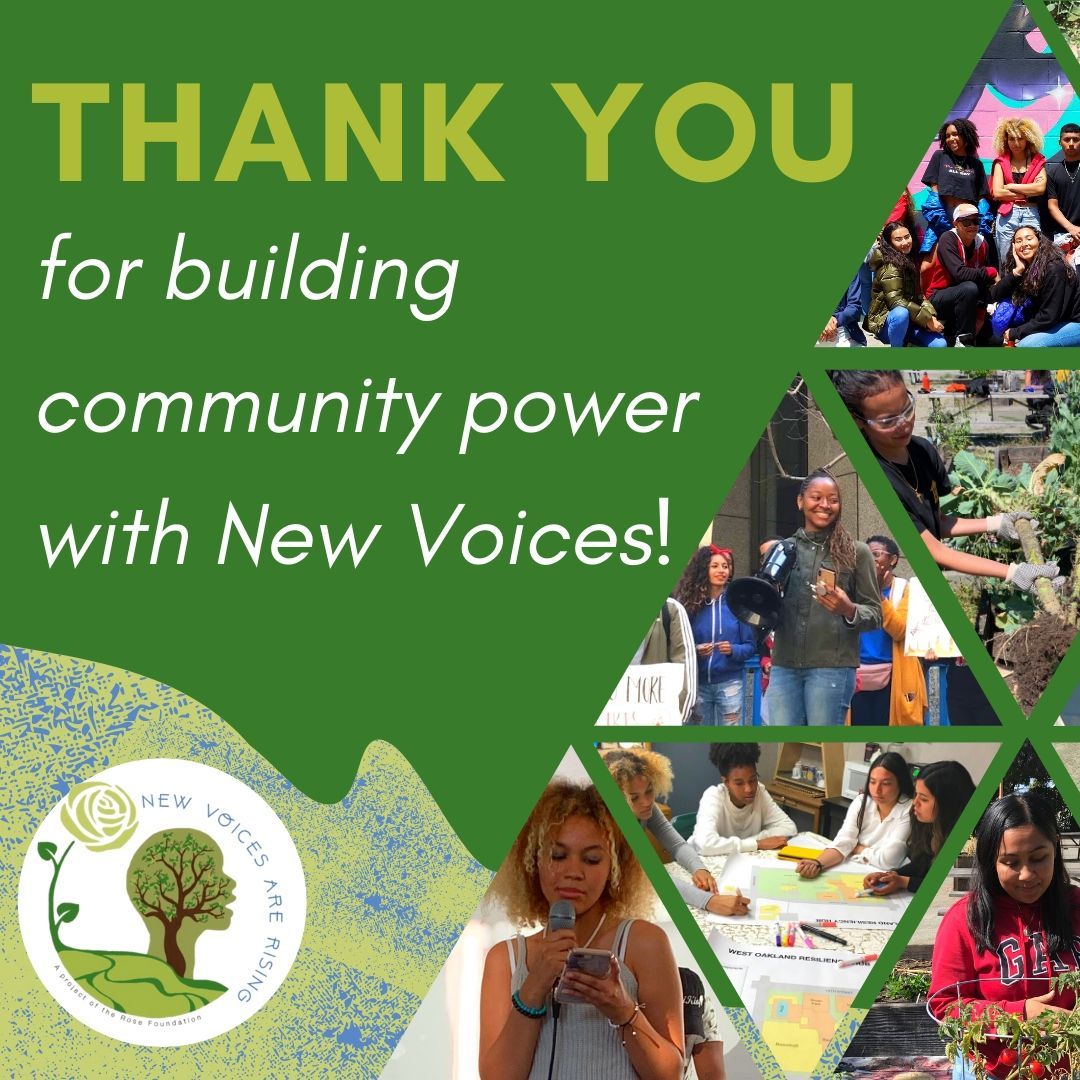 Thank YOU for building community power with New Voices!