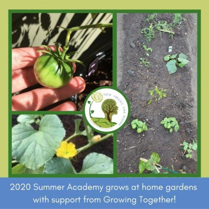 New Voices Student Gardens