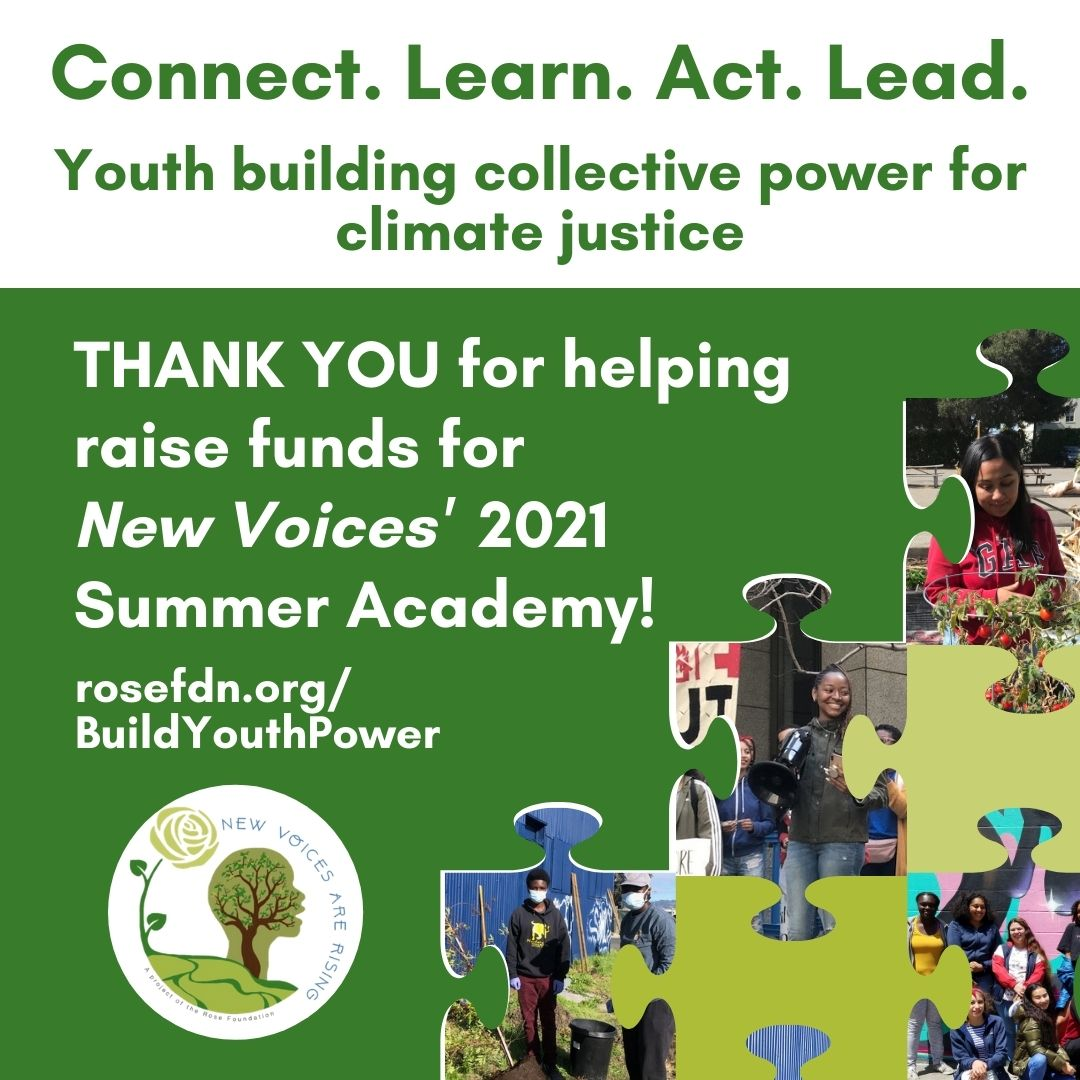 Thank You for Building Youth Power with New Voices!