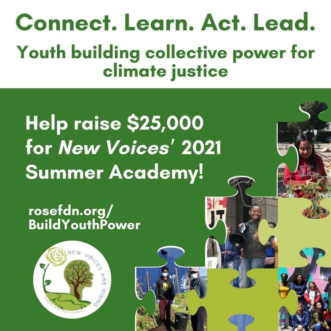 Help raise $25,000 for New Voices' 2021 Summer Academy!