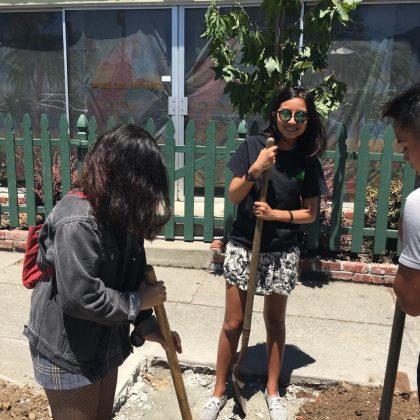 Andrea plants a tree as an intern in 2017