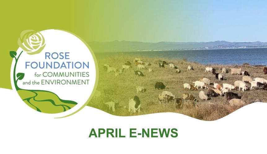 April 2021 E-News