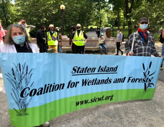 Coalition for Wetlands and Forests