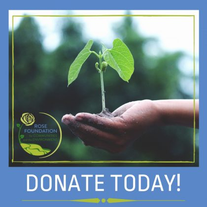 Donate today to power up grassroots action for communities and the environment!