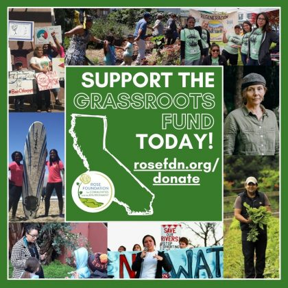 Support the Grassroots Fund today!