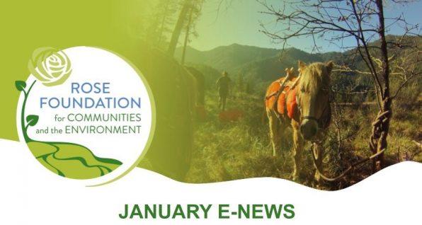 January 2021 E-News