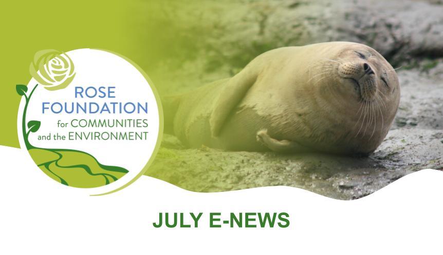 July 2021 E-News