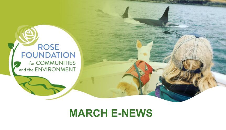 March 2021 E-News