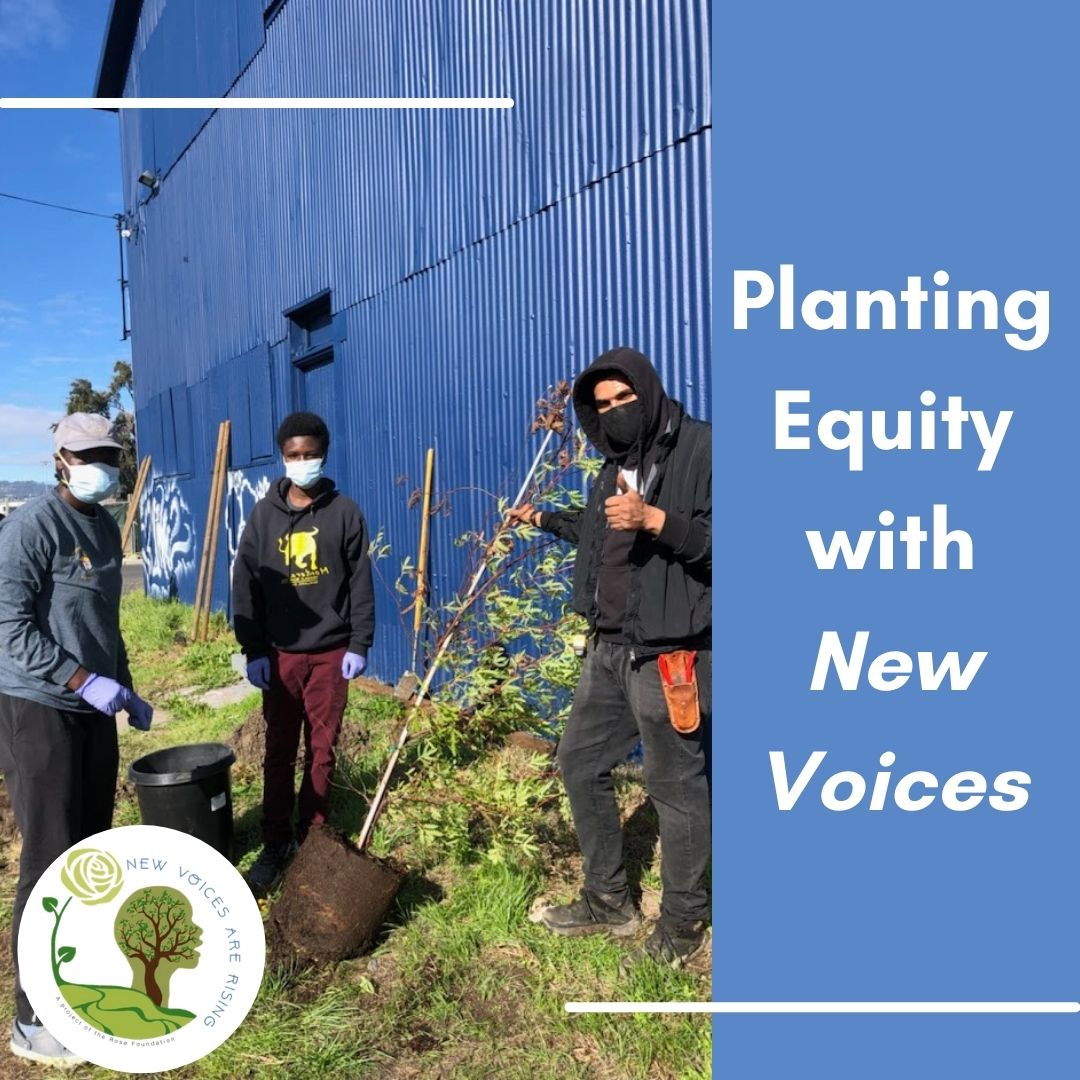 Planting Equity with New Voices