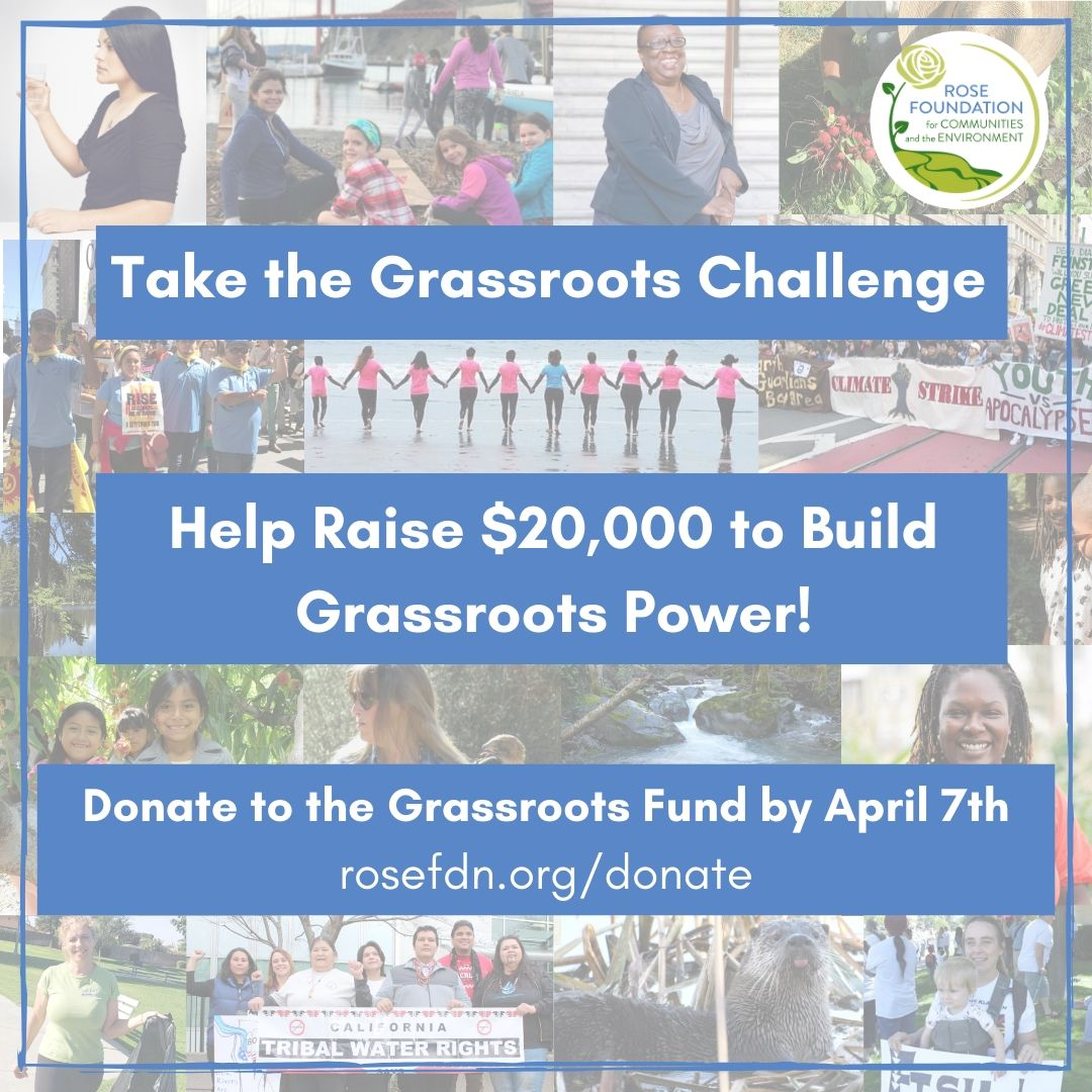 Take the Grassroots Challenge Today!